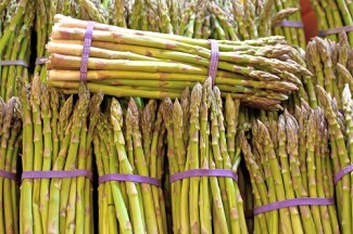 Asparagus is the crop that keeps on giving for up to 20 years! Image courtesy of Graphic Stock