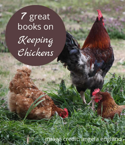 7 Great Books on Keeping Chickens