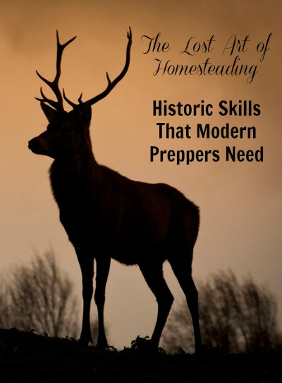 Historic Skills Modern Preppers Need