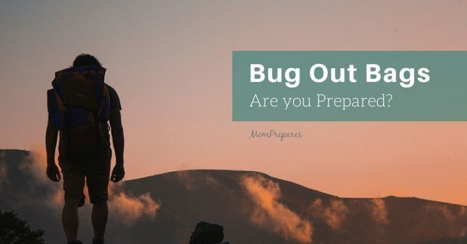 Bug Out Bag Essentials: Preparing for the Worst