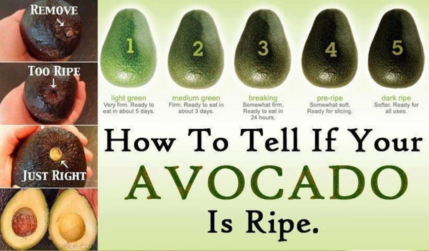 how to pick ripe avocados