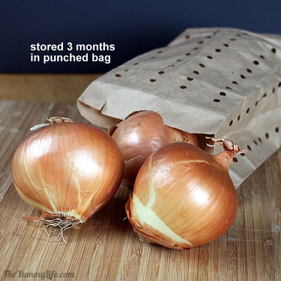 onions-in-punched-bag