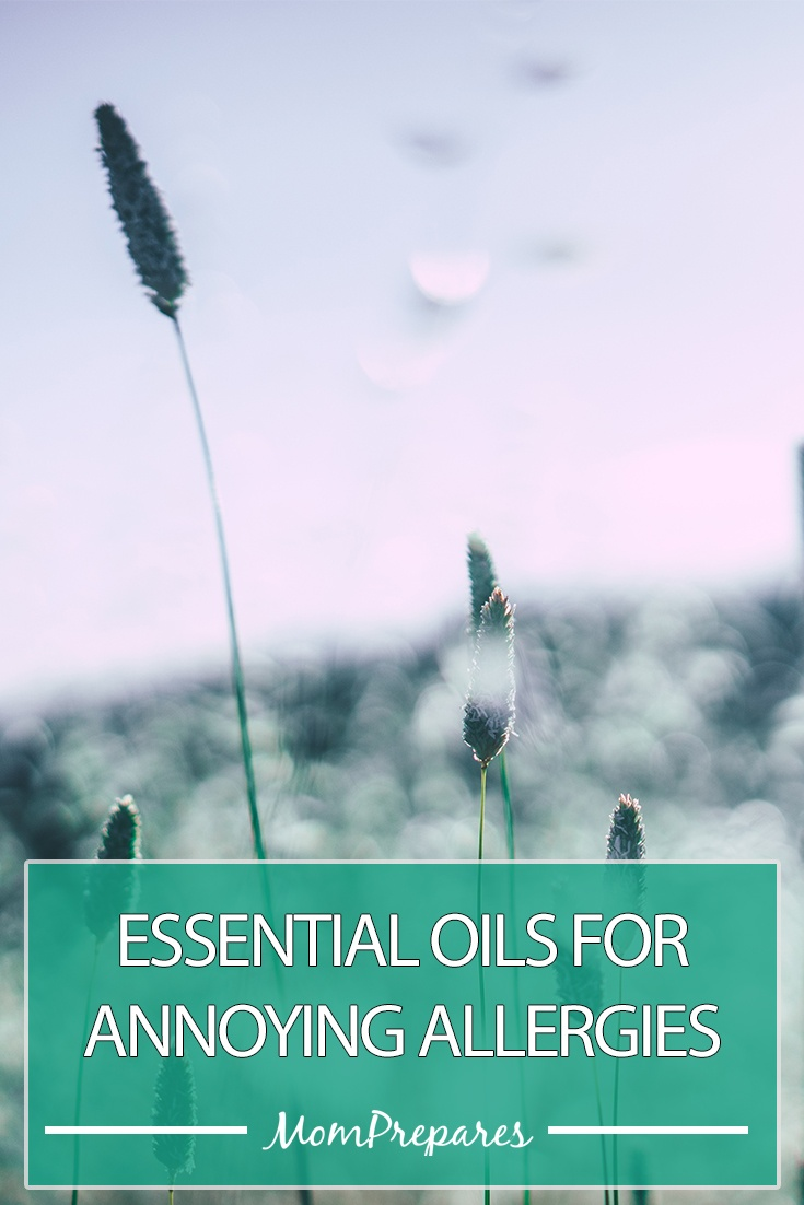 essential-oils-for-allergies-pt