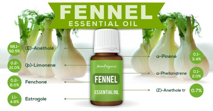 Fennel essential oil constituents