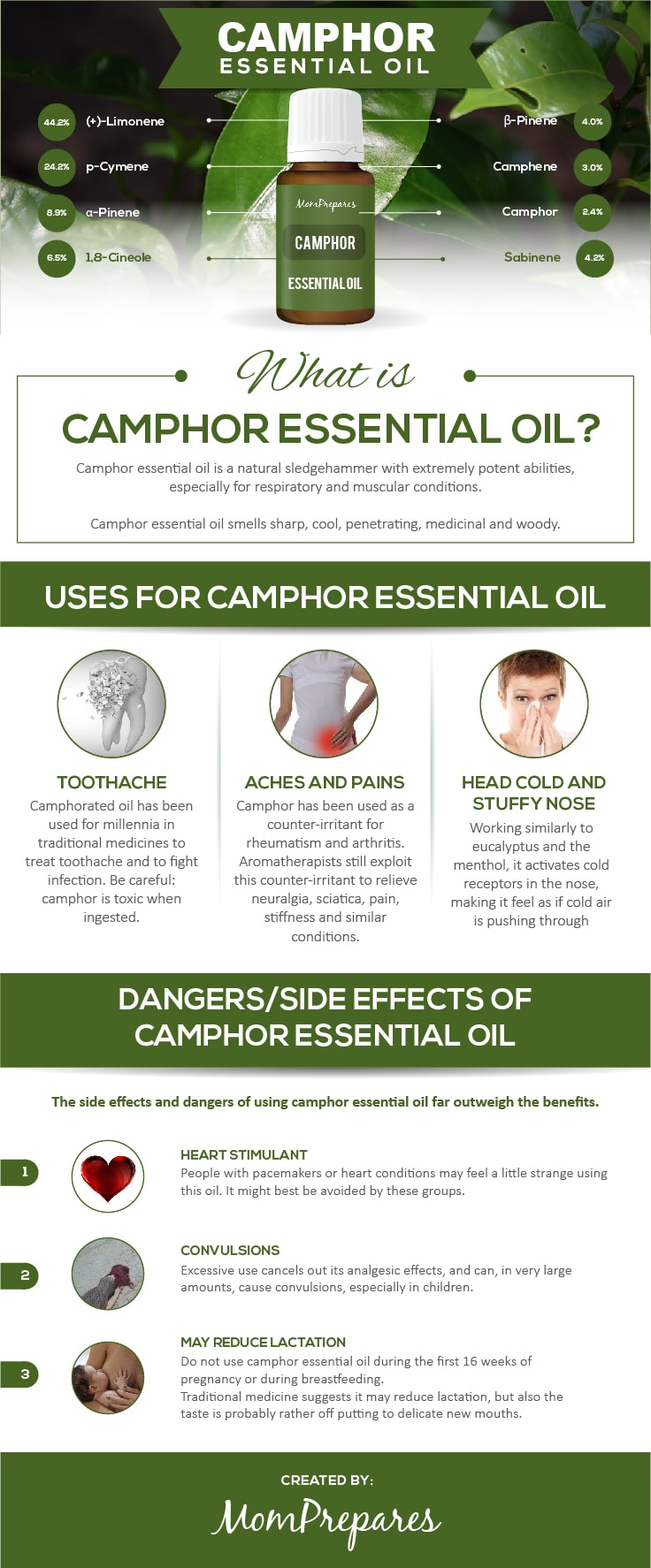 Camphor infographic