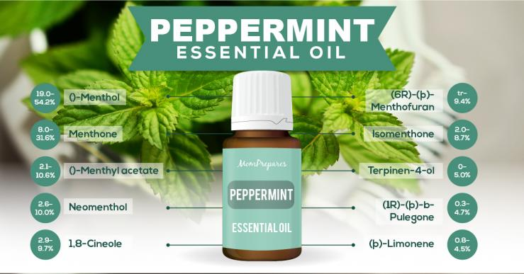 Peppermint essential oil constituents
