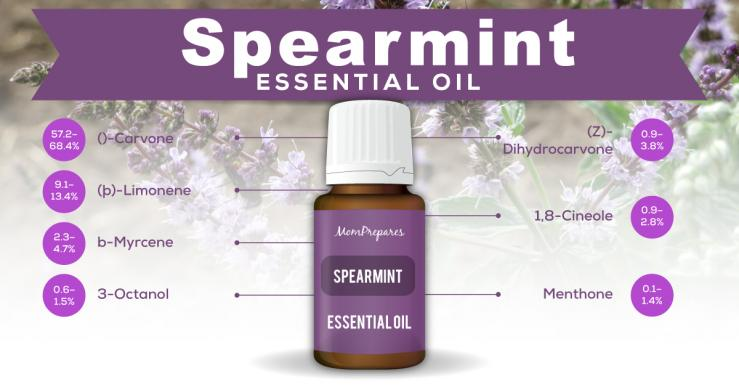 spearmint essential oil constituents