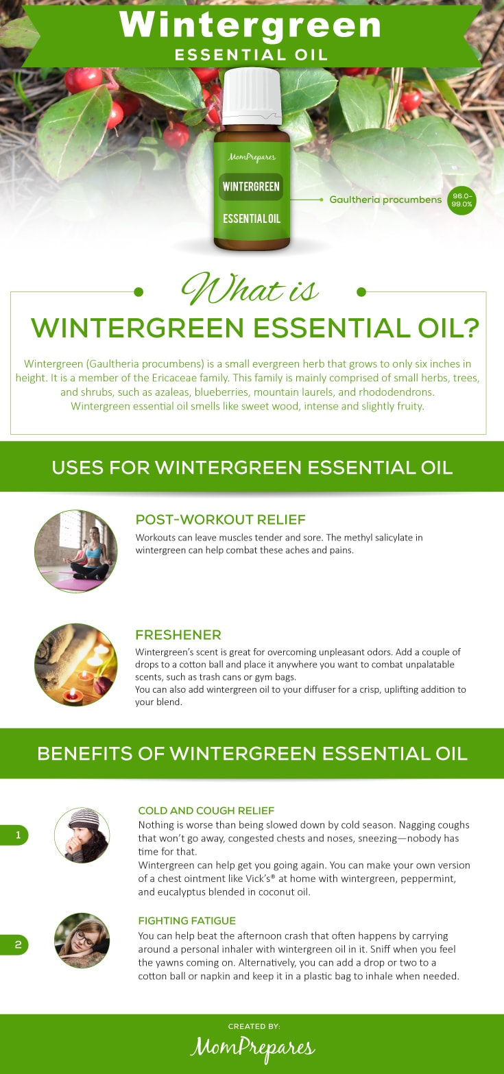 Wintergreen infographic