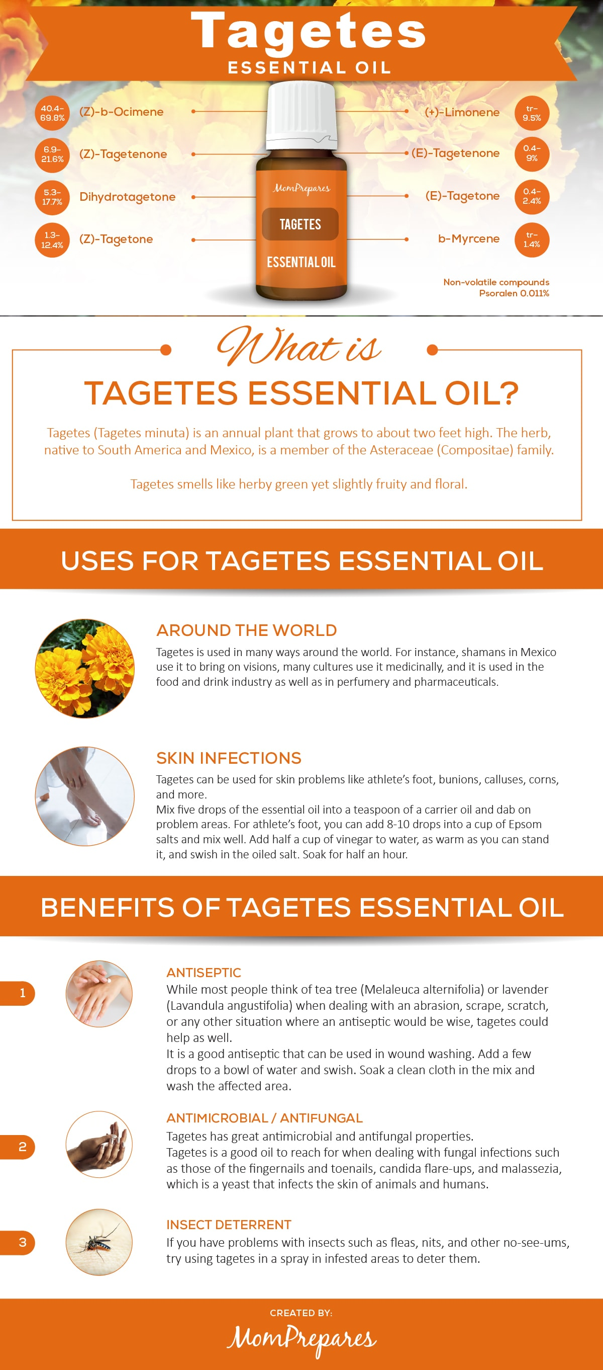 Tagetes infographic