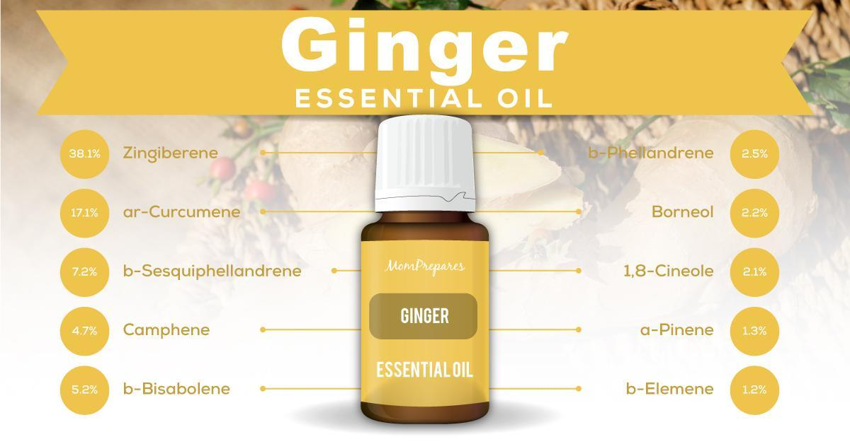 ginger essential oil constituents