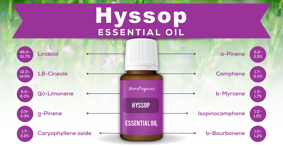 Hyssop Essential Oil - The Complete Uses and Benefits Guide