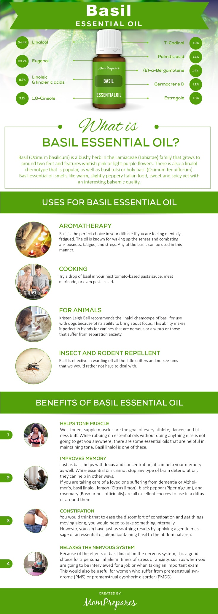Basil infographic
