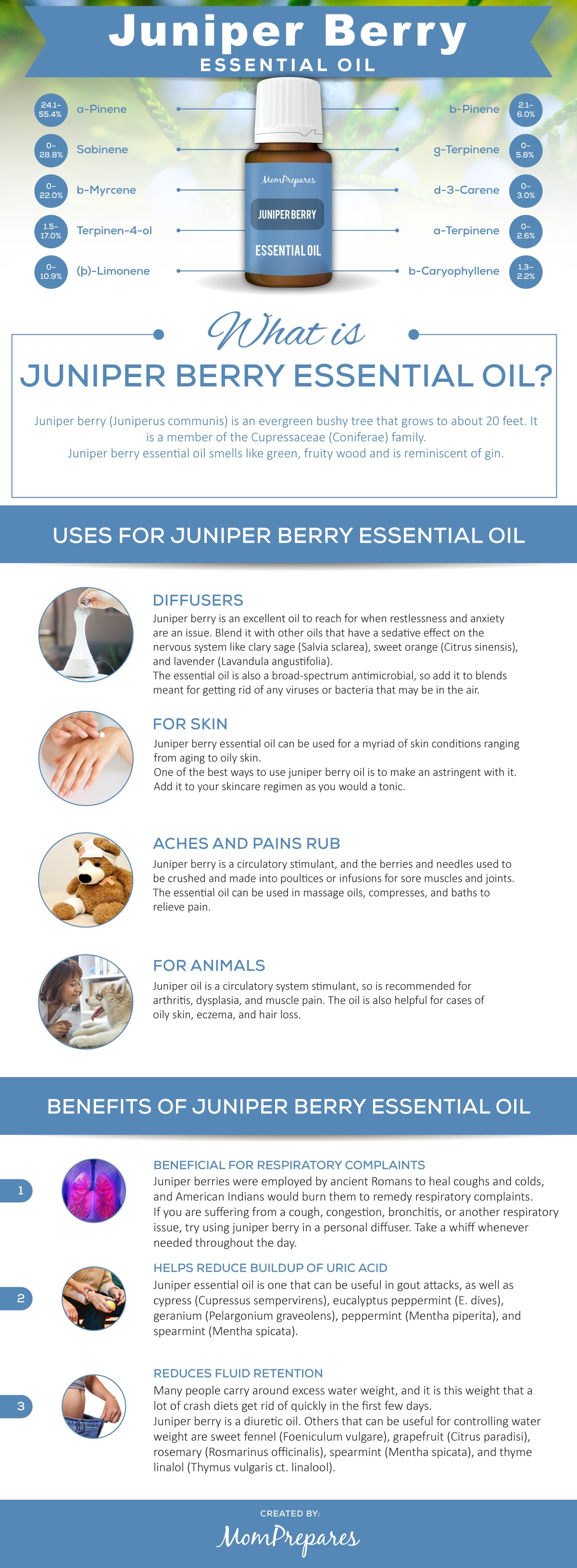 Juniper Berry infographic