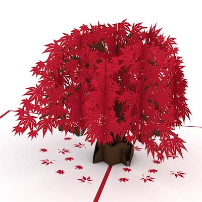 Lovepop Japanese Maple Pop Up Card