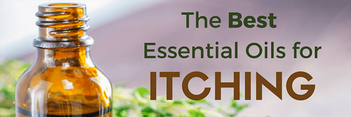 Best essential oils for itching