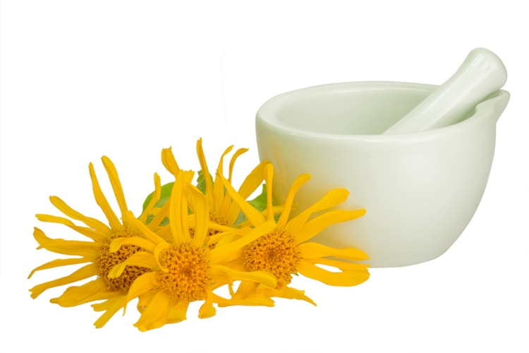 Arnica Oil Safety
