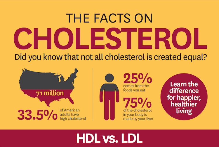 Facts on Cholesterol